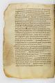 View Washington Manuscript III - The Four Gospels (Codex Washingtonensis) digital asset number 306