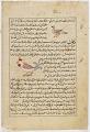 View Folio from <em>Aja'ib al-makhluqat</em> (Wonders of Creation) by al-Qazvini; recto: Bat (Kuffash); verso: Francolin (Daraj), Rooster (Dik) digital asset number 0