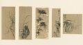 View Album of 37 Japanese drawings digital asset number 12