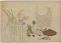 View Album of colored woodblock prints with scenes of contempory women by several artists digital asset number 17