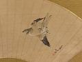 View Flying Cuckoo digital asset number 2