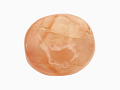 View Stamp seal digital asset number 0
