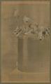 View Pigeons at Sensoji (Asakusa Kannon Temple) digital asset number 0