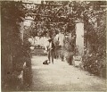 View Photographs of Charles L. Freer in Capri digital asset number 11