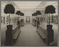 View Photographs of the James McNeill Whister Memorial Exhibition, Copley Society 1904 digital asset number 1