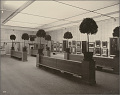 View Photographs of the James McNeill Whister Memorial Exhibition, Copley Society digital asset: Photographs of the James McNeill Whister Memorial Exhibition, Copley Society