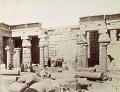 View Photographs of Egypt collected by Charles Lang Freer undated digital asset number 11