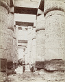 View Photographs of Egypt collected by Charles Lang Freer undated digital asset number 18