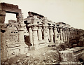 View Photographs of Egypt collected by Charles Lang Freer undated digital asset number 26