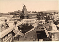 View Photographs acquired by Charles Lang Freer in India in 1895 digital asset number 10