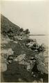 View Charles Lang Freer's own photographs taken at Longmen, 1910 digital asset number 5