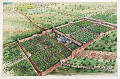 View Mughal Garden Project Drawings and Photographs digital asset: Mughal Garden Project Drawings and Photographs