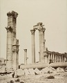 View Photographs of Palmyra, Syria digital asset number 5