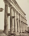 View Photographs of Palmyra, Syria digital asset number 7