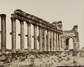 View Photographs of Palmyra, Syria digital asset number 8