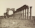 View Photographs of Palmyra, Syria digital asset number 10