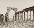 View Photographs of Palmyra, Syria digital asset number 13