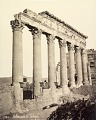 View Photographs of Palmyra, Syria digital asset number 20