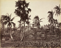 View Still Prints of Asia: Rustic Scene in Bengal digital asset: Still Prints of Asia: Rustic Scene in Bengal