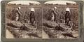 View (8) Peasants cutting millet - looking eastward across field to farmhouses, near Yokohama, Japan, 1904 or earlier. [graphic] digital asset number 0