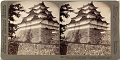 View Henry and Nancy Rosin Collection of Early Photography of Japan digital asset number 10
