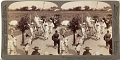 View (85) Impressive funeral procession of a rich Buddhist, on road to Sakai looking N.E. to Osaka, Japan, 1904 or earlier [graphic] digital asset number 0