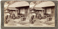 View (92) Thrifty farmers' wives heading barley by pulling it through iron combs near Iwakuni, Japan, 1904 or earlier. [graphic] digital asset number 0