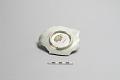 View Warped plate fragment (molded) digital asset number 1