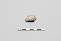 View Stone found at site digital asset number 0