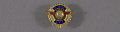 View Pin, Lapel, 15 Years Service, Wright Aeronautical Corp. digital asset number 0