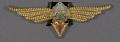 View Badge, Navigator 2nd Class, Romanian Air Force digital asset number 0