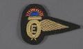 View Badge, Flight Engineer, Qantas Empire Air Lines Ltd. digital asset number 0