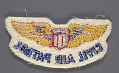 View Badge, War Training Service, Civil Aeronautics Board, Civil Air Patrol (CAP) digital asset number 2