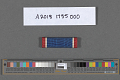 View Ribbon Bar, Distinguished Service Cross, United States Army Air Forces digital asset number 1