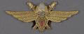 View Badge, Pilot 3rd Class, Romanian Air Force digital asset number 0