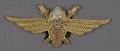 View Badge, Pilot 1st Class, Romanian Air Force digital asset number 0