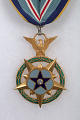View Medal, Congressional Space Medal of Honor, Armstrong digital asset number 1