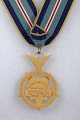 View Medal, Congressional Space Medal of Honor, Armstrong digital asset number 2