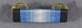 View Medal, Ribbon, Antarctica Service Medal digital asset number 0