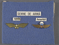 View Badge, Paratrooper, Romanian Army digital asset number 2