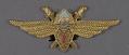 View Badge, Pilot 2nd Class, Romanian Air Force digital asset number 0