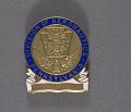 View Badge, Division of Aeronautics, Pennsylvania digital asset number 0