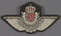 View Badge, Pilot, Royal Norwegian Air Force digital asset number 0