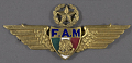 View Badge, Command Pilot, Mexican Air Force digital asset number 0