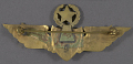 View Badge, Command Pilot, Mexican Air Force digital asset number 2