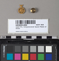 View Lapel Pin, Congressional Space Medal of Honor, Armstrong digital asset number 3