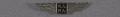 View Pin, Lapel, National Air Pilots Association digital asset number 0