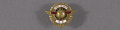 View Pin, Lapel, 10 Years Service, Wright Aeronautical Corp. digital asset number 0