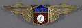 View Badge, Pilot, Colonial Airlines digital asset number 0