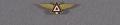 View Pin, Lapel, Amateur Air Pilots Association digital asset number 0